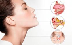 Проблемы дыхательной системы. Ухо, Горло, Нос, Глаза