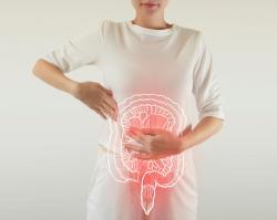 Проблемы ЖКТ, желчевыделительной и мочеполовой систем